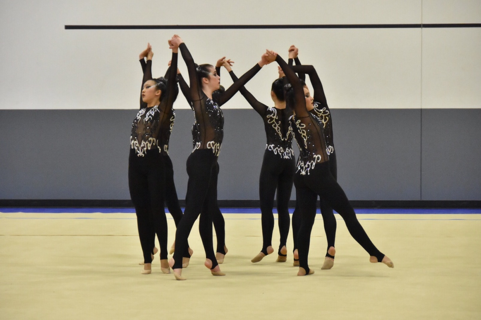 aesthetic group gymnastics usa